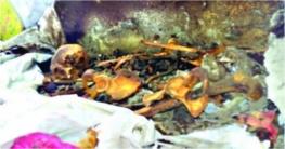 মিরপুরে দেয়াল খুঁড়তেই বেরিয়ে এলো কঙ্কাল