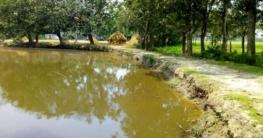 কুমিল্লা ছেলেকে বাঁচাতে গিয়ে পানিতে ডুবে মা-ছেলের মৃত্যু
