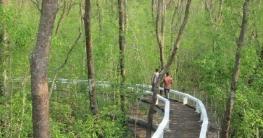 হরিণঘাটা ফুট ট্রেইল থেকে দেখা মোহনীয় দৃশ্য
