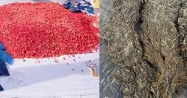 বুড়িচংয়ে গাঁজা-ইয়াবাসহ ৩ মাদক ব্যবসায়ী আটক