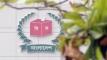 ২৪ উপজেলা-ইউপি-পৌরসভার ভোট আজ