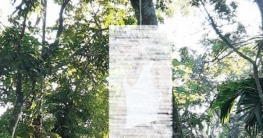 প্রেমিকের আত্মহত্যার ১১ ঘণ্টা পর ফাঁস দিলো প্রেমিকাও