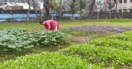 অনাবাদি জমিতে সবজি চাষ করলেন ওসি