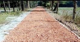 মগবাড়ী-মনোহরা রাস্তা ২০ বছর পর সংস্কার শুরু