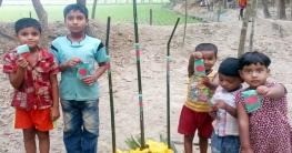 কুমিল্লার দুই-তৃতীয়াংশ প্রাথমিক বিদ্যালয়ে শহীদ মিনার নেই