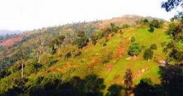 কুমিল্লার লালমাই পাহাড় ঘিরে নতুন স্বপ্ন